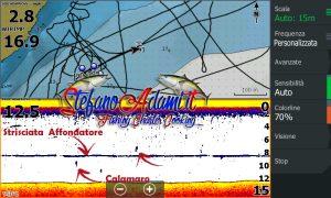 Marcature eco calamari HDS e Tm150 pescati con affondatore idrodinamico