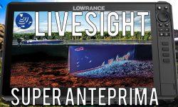 in questo breve video vi mostro 3 anteprime dell'utilizzo della nuova sonda Live Sight collegata ad un lowrance hds live