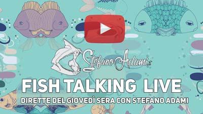 fish talking live dirette youtube stefano adami