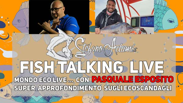 Ecoscandagli a livello pro fish talking live