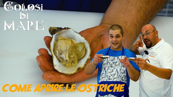 Come si aprono le ostriche, Golosi di mare ep 5