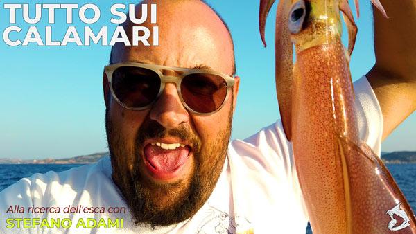 Tutto sui calamari, alla ricerca dell'esca con Stefano Adami