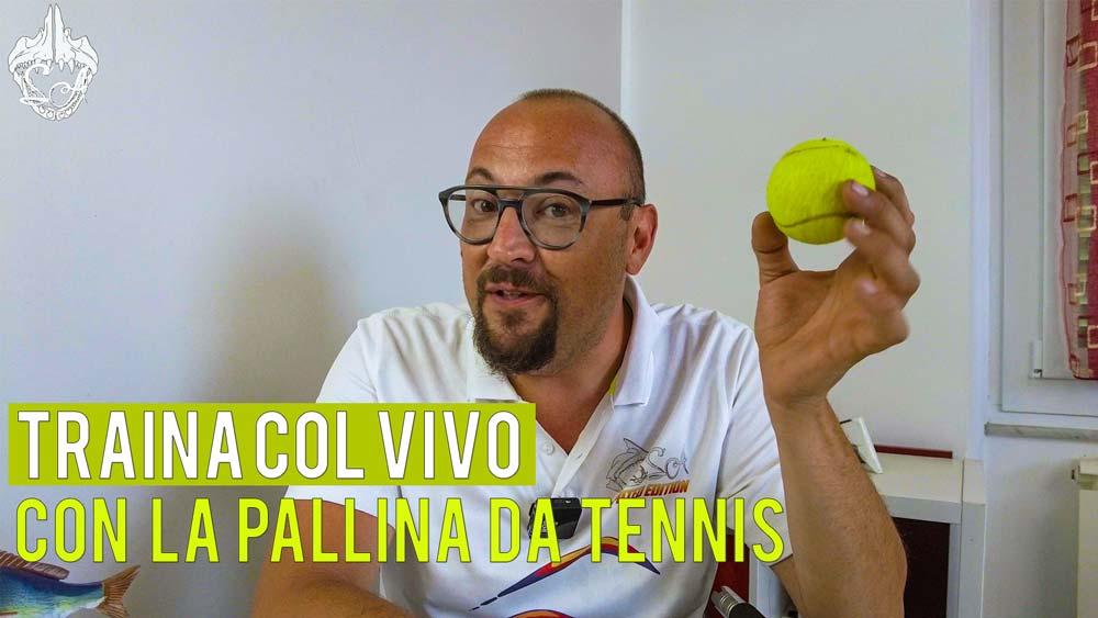 Traina col vivo con la pallina da tennis